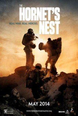 Hornet_nest