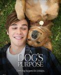 A Dog's Purpose (Smisao života jednog psa) 2017
